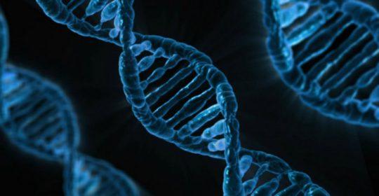 Obciążenie genetyczne a nowotwór – czy jestem w grupie ryzyka?