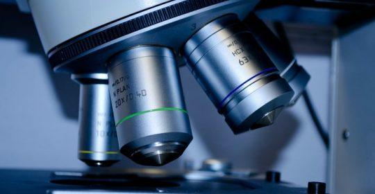 Badania przesiewowe w kierunku groźnych nowotworów – chroń swoje życie