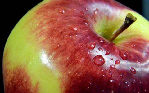 Błonnik Pokarmowy, czyli ważny czynnik profilaktyczny raka