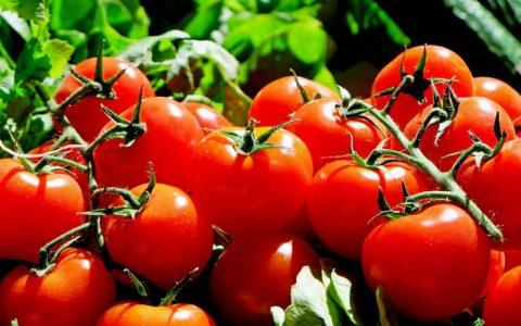 Likopen, czyli jak pomidory chronią przed rakiem prostaty